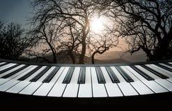 Les clés de piano contre le contexte d'une montagne aménagent en parc avec le tre Image libre de droits