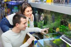 Les clients positifs heureux sélectionnant les poissons tropicaux dans l'aquarium se bronzent Photographie stock libre de droits