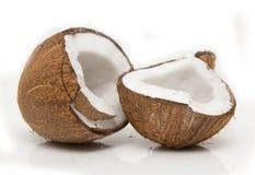 Les Cocos de fente Photographie stock