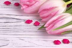 Les coeurs pourpres avec les tulipes roses sur le blanc ont peint le fond en bois blanc rustique Jour de Valentine Image stock