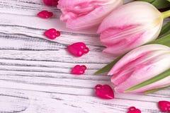 Les coeurs pourpres avec les tulipes roses sur le blanc ont peint le fond en bois blanc rustique Jour de Valentine Photo libre de droits