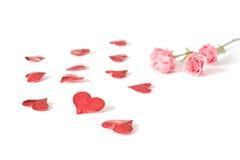 les coeurs rouge-rose ont monté Photographie stock libre de droits
