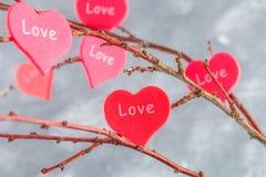 Les coeurs rouges avec un amour d'inscription accrochent sur des branches sur un fond concret gris Arbre d'amour Le concept de la Photographie stock libre de droits