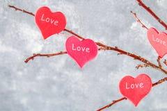 Les coeurs rouges avec un amour d'inscription accrochent sur des branches sur un fond concret gris Arbre d'amour Le concept de la Image libre de droits