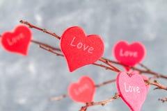 Les coeurs rouges avec un amour d'inscription accrochent sur des branches sur un fond concret gris Arbre d'amour Le concept de la Photographie stock