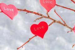 Les coeurs rouges avec un amour d'inscription accrochent sur des branches sur un fond concret gris Arbre d'amour Le concept de la Photo stock