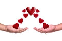 Les coeurs rouges volent dans des mains sur le fond blanc Concept d'amour Images libres de droits