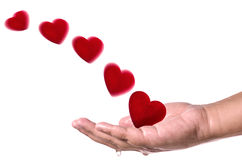 Les coeurs rouges volent dans la main sur le fond blanc Concept d'amour Photographie stock libre de droits
