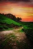 Les collines au coucher du soleil image libre de droits
