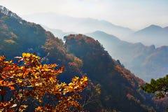 Les collines et la mer automnales des nuages photographie stock libre de droits