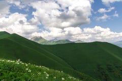 Les collines vertes Photographie stock
