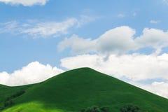 Les collines vertes Image stock