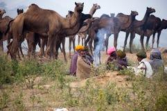 Les commerçants de chameau de pushkar Photographie stock