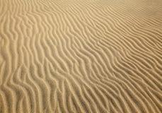 Les configurations sont parties par le vent sur une dune de sable photos libres de droits