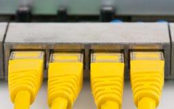 Les connecteurs d'UTP RJ-45 de plan rapproché dans des routeurs met en communication Photographie stock libre de droits