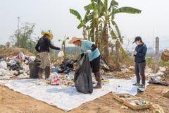 Les Conseils commandent préparent des tamis dans l'étang d'enlèvement des ordures Image libre de droits