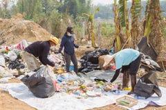 Les Conseils commandent préparent des tamis dans l'étang d'enlèvement des ordures Images libres de droits