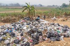 Les Conseils commandent préparent des tamis dans l'étang d'enlèvement des ordures Photographie stock