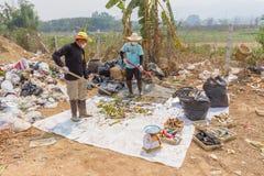Les Conseils commandent préparent des tamis dans l'étang d'enlèvement des ordures Photos libres de droits
