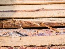 Les conseils empilés sur l'un l'autre Panneaux de pin Se trouvant le règlage les conseils, pile de pin embarque sur le bâtiment Photos stock