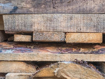 Les conseils empilés sur l'un l'autre Panneaux de pin Se trouvant le règlage les conseils, pile de pin embarque sur le bâtiment Image stock