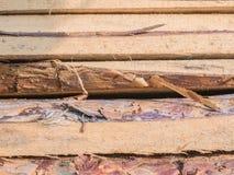 Les conseils empilés sur l'un l'autre Panneaux de pin Se trouvant le règlage les conseils, pile de pin embarque sur le bâtiment Photographie stock libre de droits