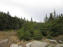 Les contrebandiers entaillent, New Hampshire images libres de droits