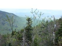 Les contrebandiers entaillent, New Hampshire photographie stock