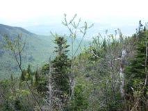 Les contrebandiers entaillent, New Hampshire photographie stock libre de droits