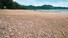 les coquilles échouent Krabi Thaïlande images stock
