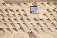 Les coquilles autoguident à Salamanque, Espagne Images stock