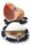 Les coquilles avec la perle et le Rapana ont isolé Images libres de droits