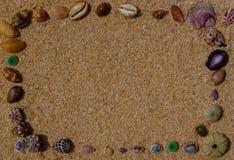 Les coquilles encadrent sur le sable photographie stock libre de droits
