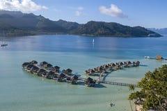 Les coraux font du jardinage des récifs dans la vue aérienne de Polynésie française avec le bourdon photographie stock