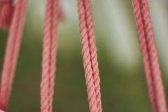 Les cordes Photographie stock