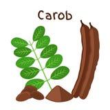 Les cosses de caroube, haricots, poudre, part Superfood illustration de vecteur