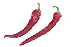 Les cosses du poivre d'un rouge ardent sur un fond blanc Image libre de droits