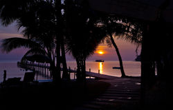 Les couchers du soleil silhouettent le pourpre Images stock