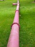 les couleurs contrastent la haute eau de pipes Images libres de droits