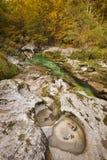 Les couleurs d'automne dans le Mostnica se gorgent en Slovénie image libre de droits