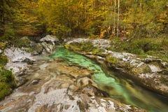 Les couleurs d'automne dans le Mostnica se gorgent en Slovénie photographie stock