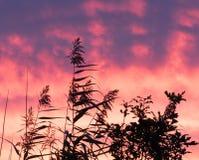 Les couleurs dans le ciel sont étonnantes ! photographie stock