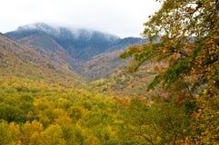 Les couleurs de chute avec la neige ont couvert des montagnes dans le Smokies Images stock