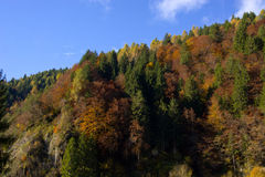 Les couleurs de l'éclat d'automne Photo stock