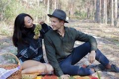 Les couples à un pique-nique boivent du vin et mangent des raisins photos stock
