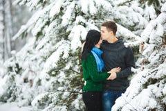 Les couples affectueux heureux marchant dans la forêt neigeuse d'hiver, dépensant Noël vacation ensemble Capture de mode de vie Images libres de droits