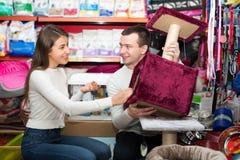 Les couples choisissent des meubles de chat Photo stock