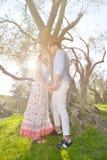 Les couples détendent sous l'arbre Style de beaux-arts Jardin olive Image stock