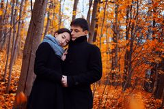 les couples d'automne stationnent des jeunes Type mignon et une fille marchant ensemble Photographie stock libre de droits