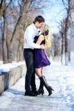 Les couples dans l'amour marchant pendant l'hiver se garent Image libre de droits